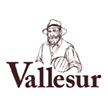 Vallesur